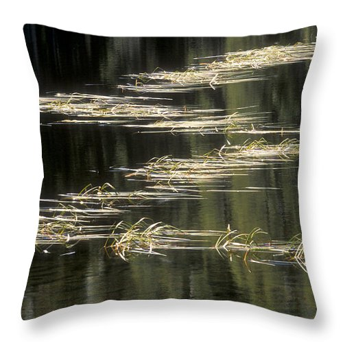 Bronstein Throw Pillow featuring the photograph Pond And Grass Abstract by Sandra Bronstein