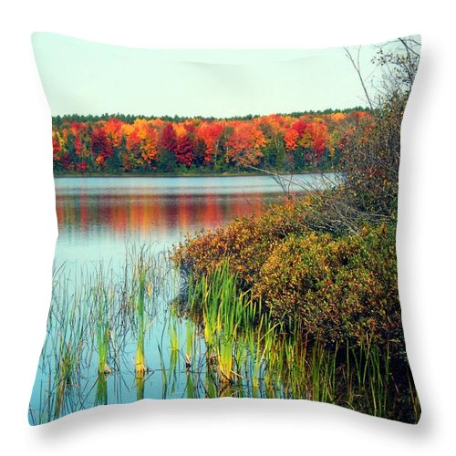 Pure Michigan Throw Pillow featuring the photograph Pond In The Woods In Autumn by Desiree Paquette