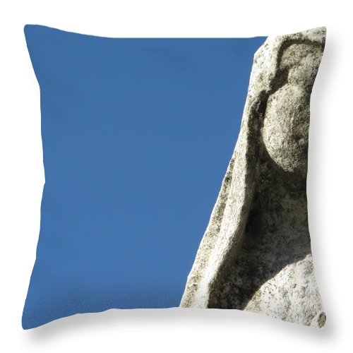 Graveyard Throw Pillow featuring the photograph Pondering by Michele Nelson