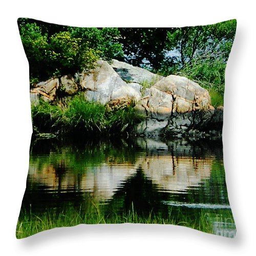 New England Throw Pillow featuring the photograph Pool In Marsh At Mystic Ct by Lizi Beard-Ward