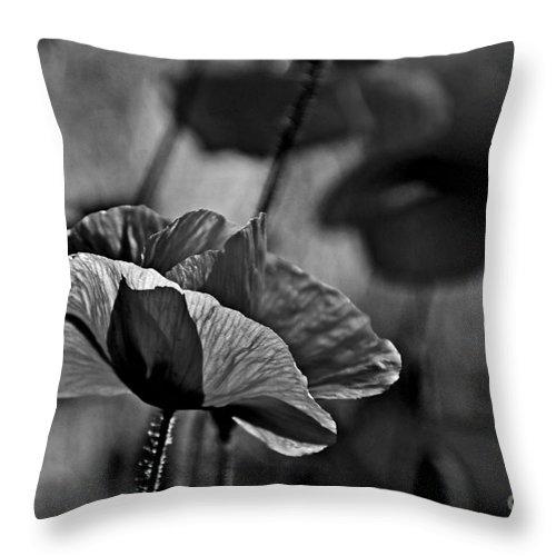 Poppy Love Throw Pillow featuring the photograph Poppy Love by Andrea Kollo