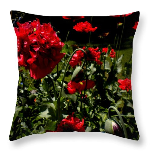 Red Throw Pillow featuring the painting Poppy Pompom by Renate Nadi Wesley