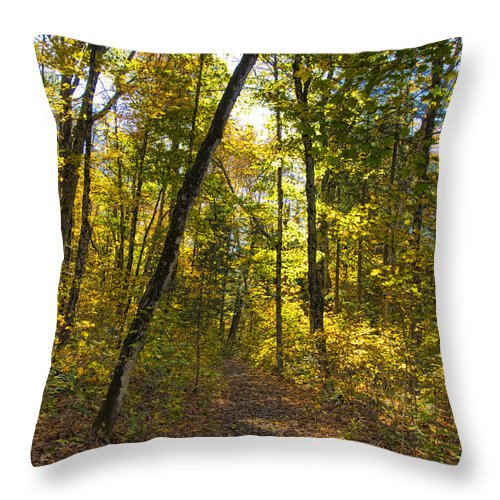 Nature Throw Pillow featuring the photograph Portal Through The Woods by Jo-Anne Gazo-McKim