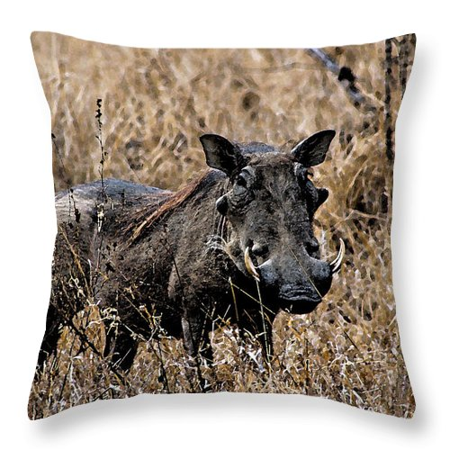 Africa Throw Pillow featuring the photograph Portrait Of A Warthog by Paul Fell