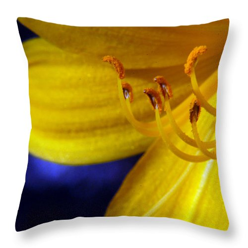 Lily Throw Pillow featuring the photograph Pot Of Gold by Wanda Brandon