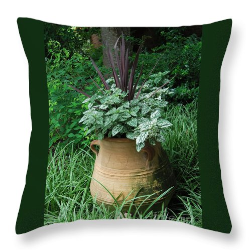 Nature Throw Pillow featuring the digital art Pot Of Plants by Eva Kaufman