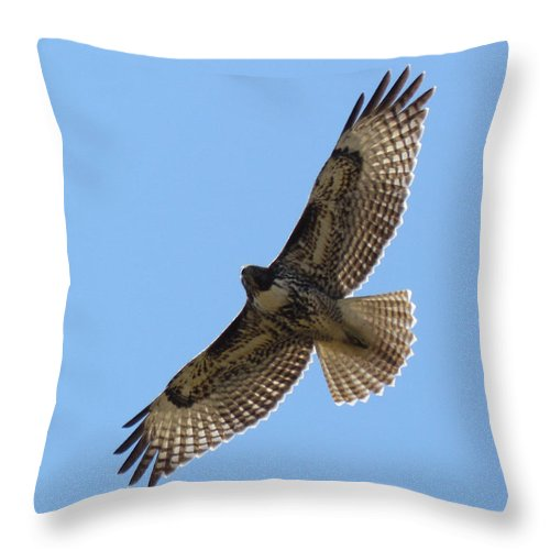 Art Sale Throw Pillow featuring the photograph Powerful Freedom by John Irons