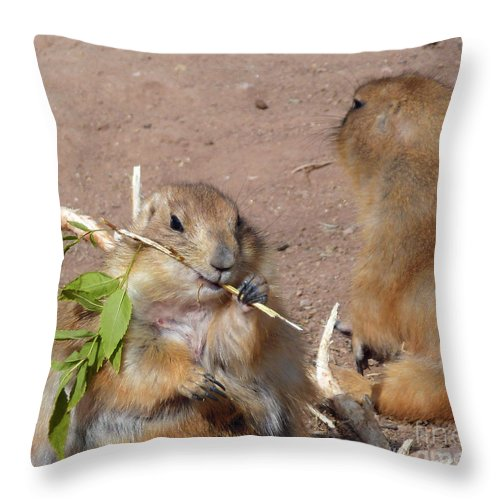Prairie Dogs Throw Pillow featuring the photograph Prairie Dogs by Methune Hively
