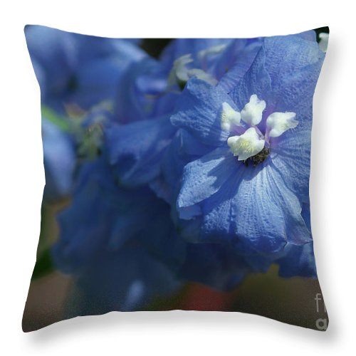 Blue Throw Pillow featuring the photograph Pretty Blue Delphinia by Sabrina L Ryan