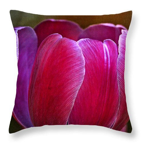 Tulip Throw Pillow featuring the photograph Pretty In Pink by Deborah Benoit