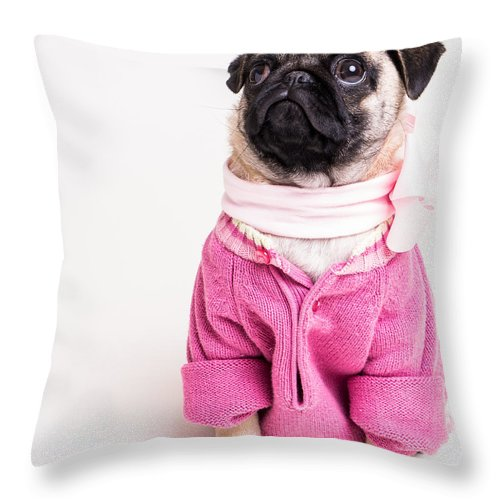 Pug Throw Pillow featuring the photograph Pretty In Pink by Edward Fielding