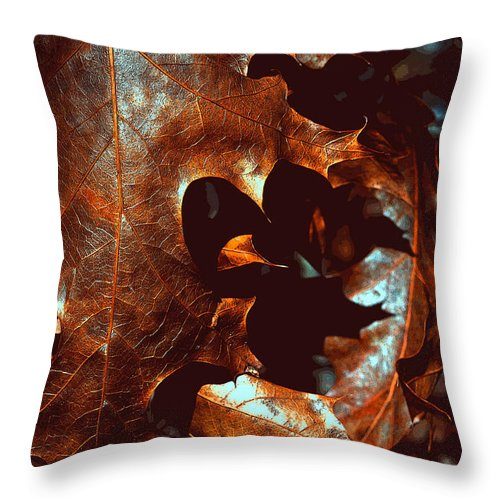 Leaves Throw Pillow featuring the photograph Pretty Oak Leaves by Mary Anne Williams