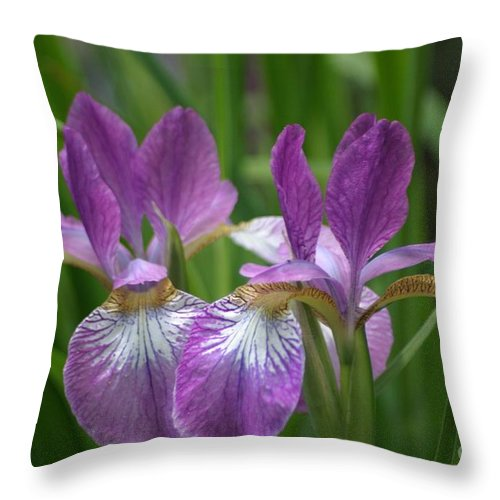 Floral Throw Pillow featuring the photograph Pretty Pair Of Purple Irises by Living Color Photography Lorraine Lynch