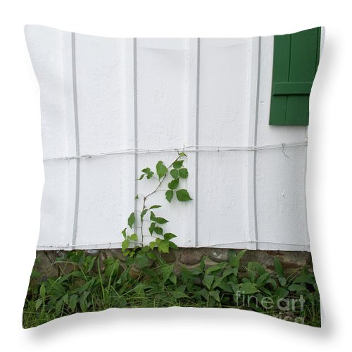 Poison Ivy Throw Pillow featuring the photograph Pretty Suspicious by Ann Horn