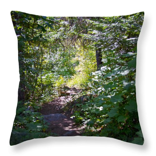 Kalispell Throw Pillow featuring the photograph Priest Lake Trail Series IIi - Trail Shadows by David Patterson