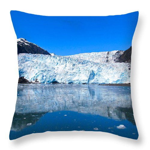 Alaska Throw Pillow featuring the photograph Profound Timeliness by Michael Anthony