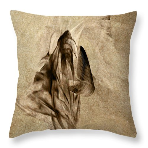 Jean Moore Throw Pillow featuring the digital art Prophet Of The Most High by Jean Moore