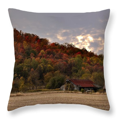Barn Protected Throw Pillow featuring the photograph Protected By Hills Many Years by Randall Branham