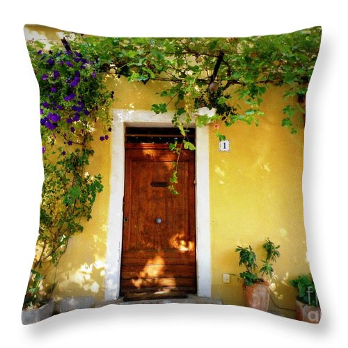 Door Throw Pillow featuring the photograph Provence Door Number 1 by Lainie Wrightson
