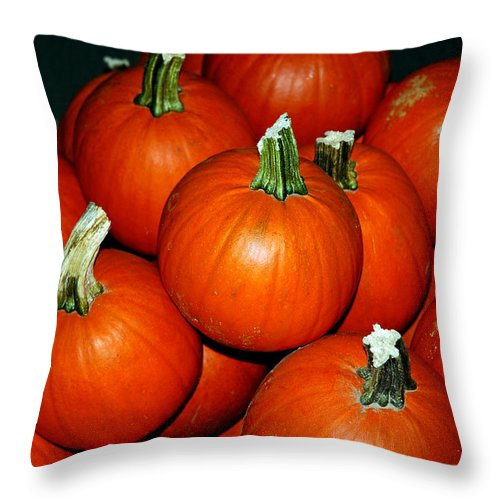 Food And Beverage Throw Pillow featuring the photograph Pumpkins For Sale by LeeAnn McLaneGoetz McLaneGoetzStudioLLCcom