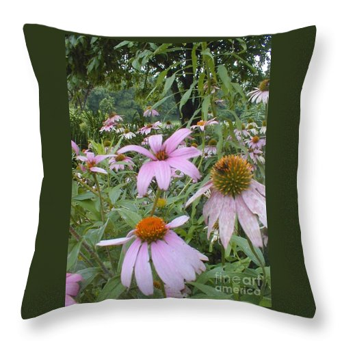 Flowers Throw Pillow featuring the photograph Purple Coneflowers by Vonda Lawson-Rosa