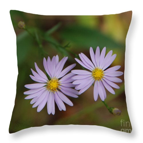 Flowers Throw Pillow featuring the photograph Purple Flowers by Grace Grogan