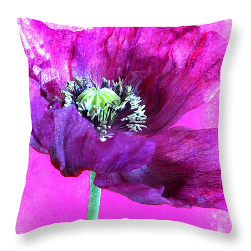 Flower Throw Pillow featuring the photograph Purple Poppy On Pink by Carol Leigh