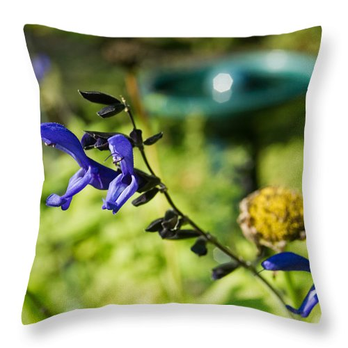 Purple Throw Pillow featuring the photograph Purple Sage 8 by Douglas Barnett