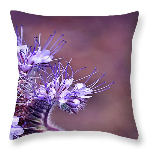 Flower Throw Pillow featuring the photograph Purple Tips by Bel Menpes