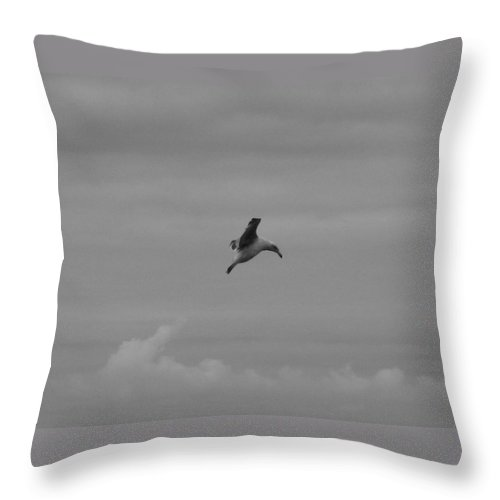 Seagull Throw Pillow featuring the photograph Putting On The Brakes by Linda Hutchins