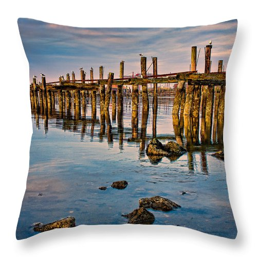 Seascape Throw Pillow featuring the photograph Pylons In Humboldt Bay by Greg Nyquist