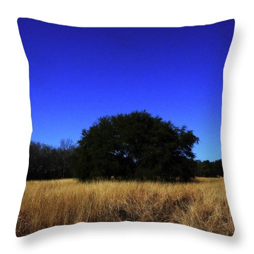 Blue Throw Pillow featuring the photograph Quiet Meadow by Maggy Marsh