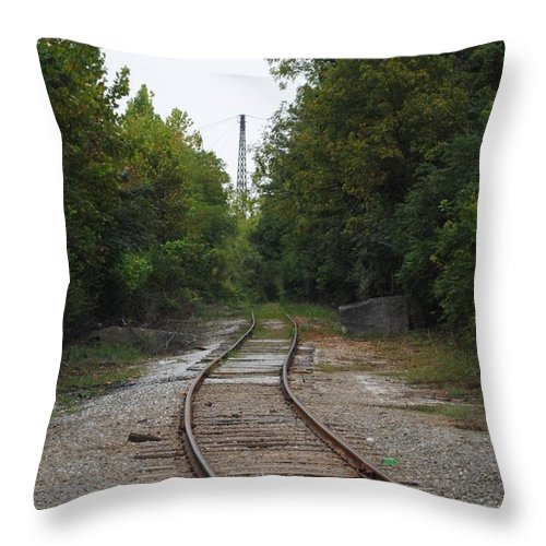 Rail Throw Pillow featuring the photograph Rail To The Forest by Jost Houk
