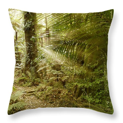 Daytime Throw Pillow featuring the photograph Rainforest by Les Cunliffe