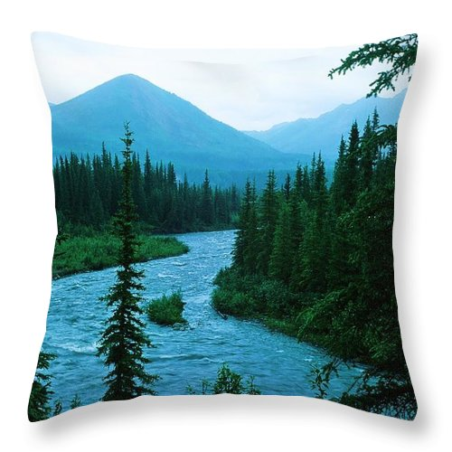 Alaska Throw Pillow featuring the photograph Rainy Day At The River by Ronnie Glover