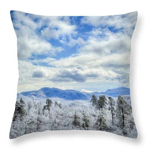Christmas Throw Pillow featuring the photograph Raven's View In Winter by Joye Ardyn Durham