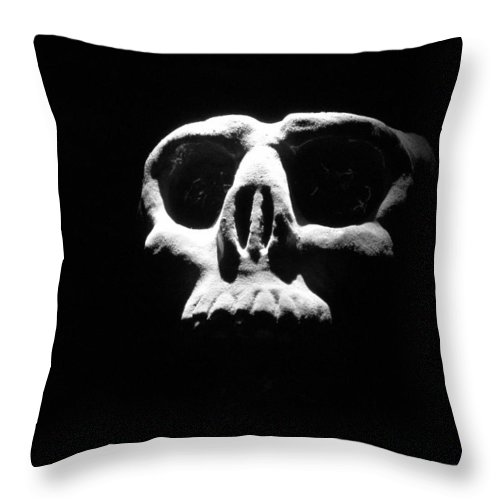 Skull Throw Pillow featuring the photograph Reality Check by One Rude Dawg Orcutt