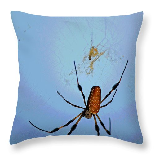 Fine Art Throw Pillow featuring the photograph Recurring Dream by Suzanne Gaff