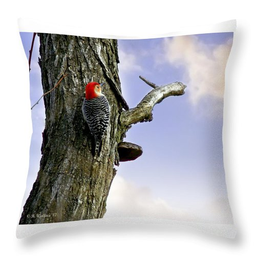 2d Throw Pillow featuring the photograph Red-bellied Woodpecker - Male by Brian Wallace