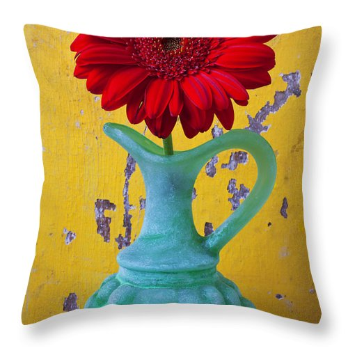 Red Throw Pillow featuring the photograph Red Daisy In Grape Vase by Garry Gay