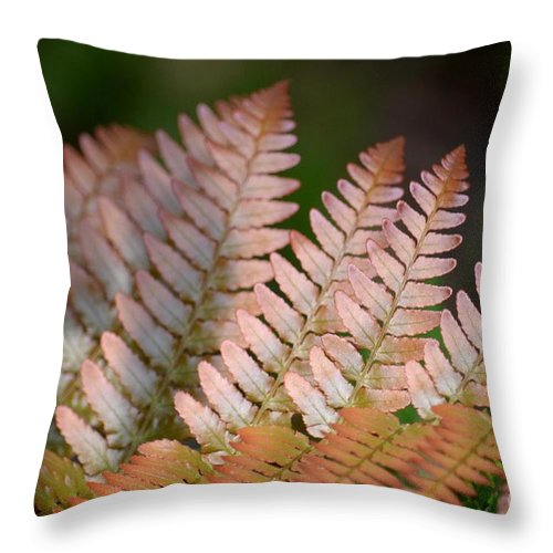 Red Throw Pillow featuring the photograph Red Fern by Maria Urso