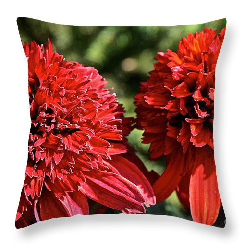 Outdoors Throw Pillow featuring the photograph Red Head Twins by Susan Herber