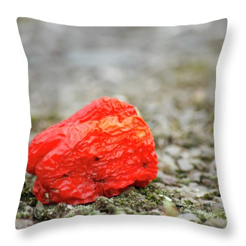 Pepper Throw Pillow featuring the photograph Red by Maglioli Studios
