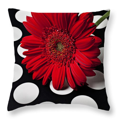 Red Throw Pillow featuring the photograph Red Mum With White Spots by Garry Gay