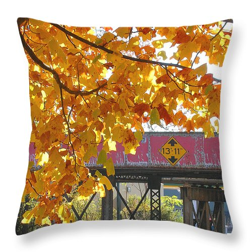 Railroad Throw Pillow featuring the photograph Red Railroad Trestle by Lizi Beard-Ward