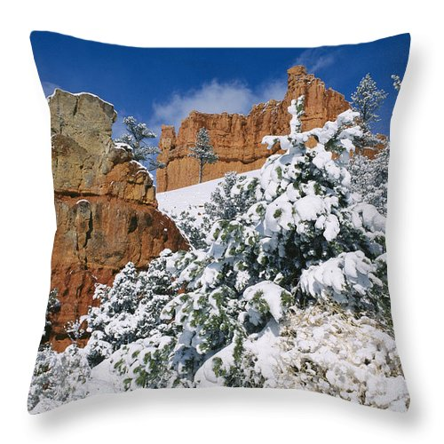 united States Throw Pillow featuring the photograph Red Rock Formations Poke Through A Late by Raymond Gehman