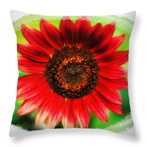 Red Throw Pillow featuring the photograph Red Sun Flower by Bill Cannon