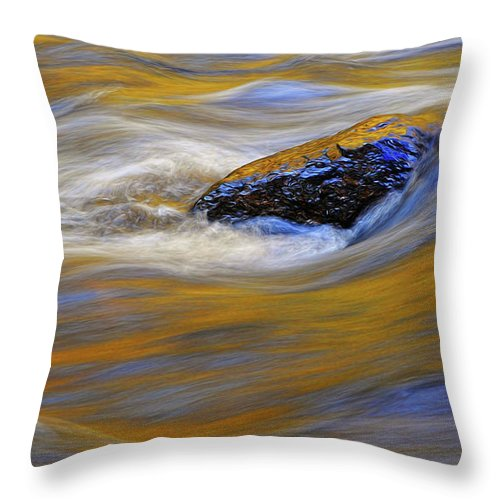 Water Throw Pillow featuring the photograph Reflected Color by Dave Mills