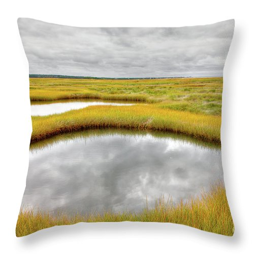 Abstract Throw Pillow featuring the photograph Reflecting Pools by Susan Cole Kelly
