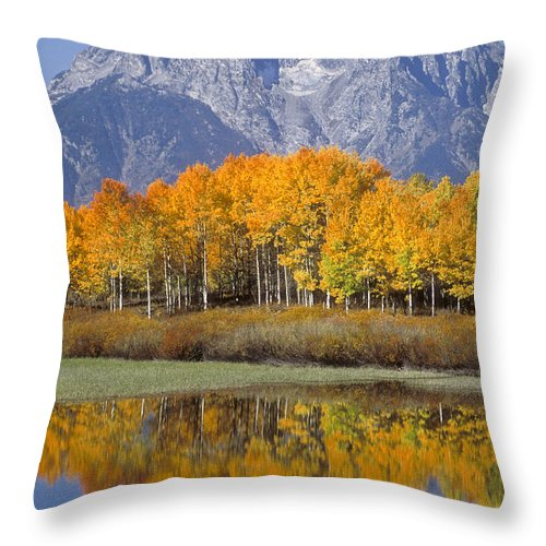 Bronstein Throw Pillow featuring the photograph Reflection At Oxbow Bend by Sandra Bronstein